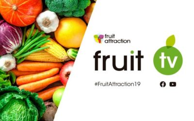 Participación egipcia en la feria Fruit Attraction 2019